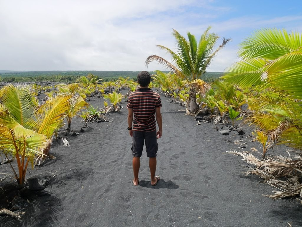 Black sand beach - Big Island
