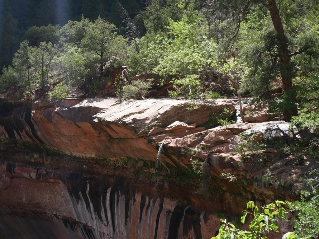 Emerald Pool Lower - Zion