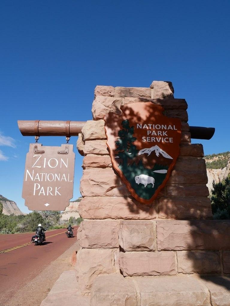 Bonjour Zion !
