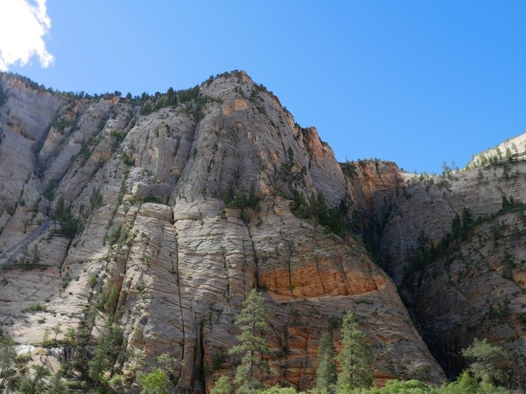Montée Observation Point - Zion