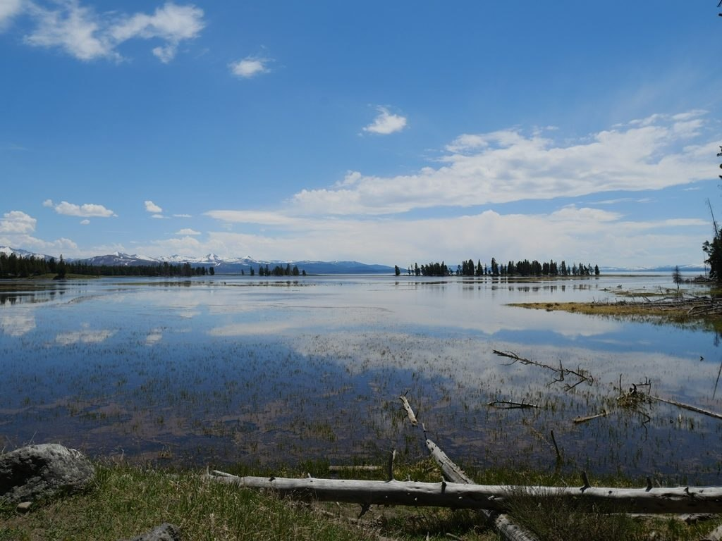 Lac Yellowstone