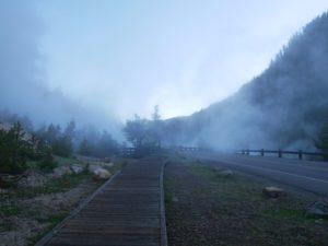 Passage sous la brume matinale