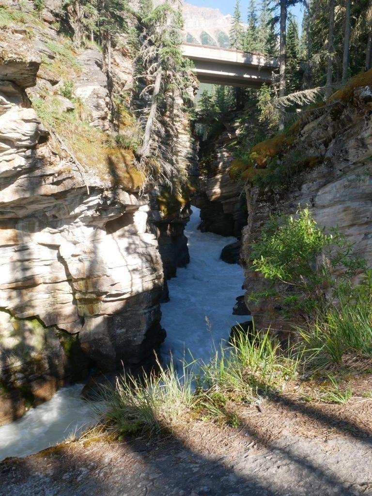 Canyon des chuttes d'Athabasca - Jasper