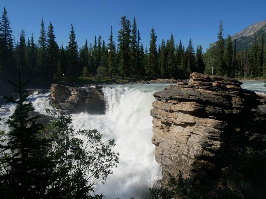 Chuttes d'Athabasca - Jasper