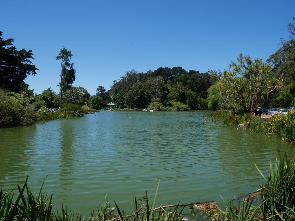 Golden gate park étang à San Francisco