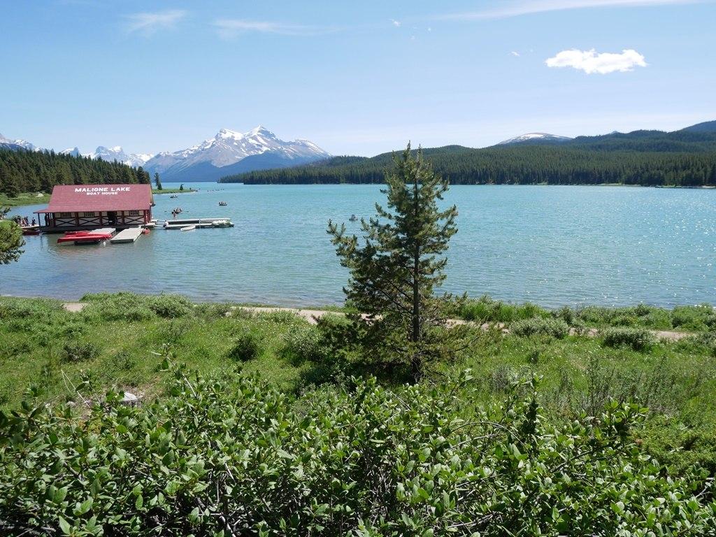 Lac Maligne à Jasper