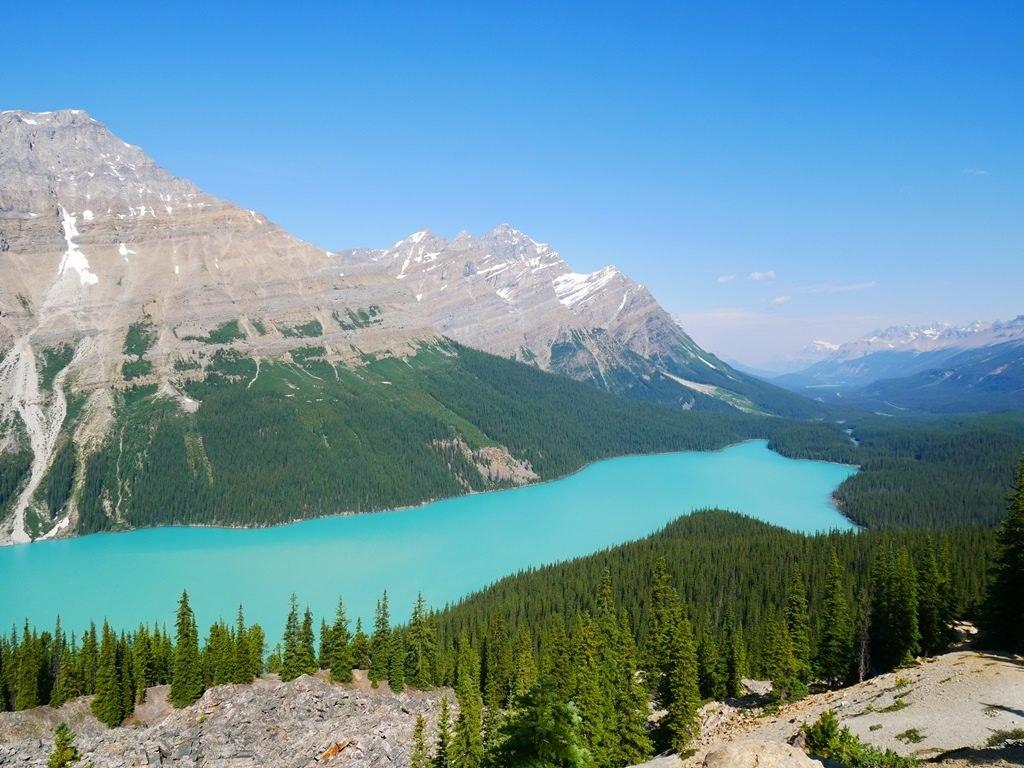 Lac Peyto premier belvédère à Banff