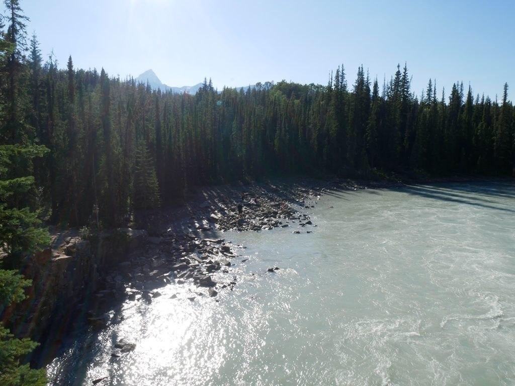 Plage des chuttes d'Athabasca - Jasper