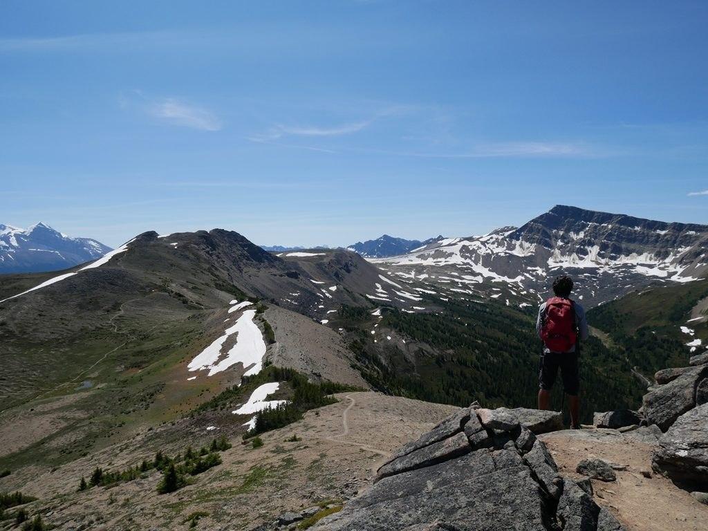 Sentier Bald Hills - Jasper