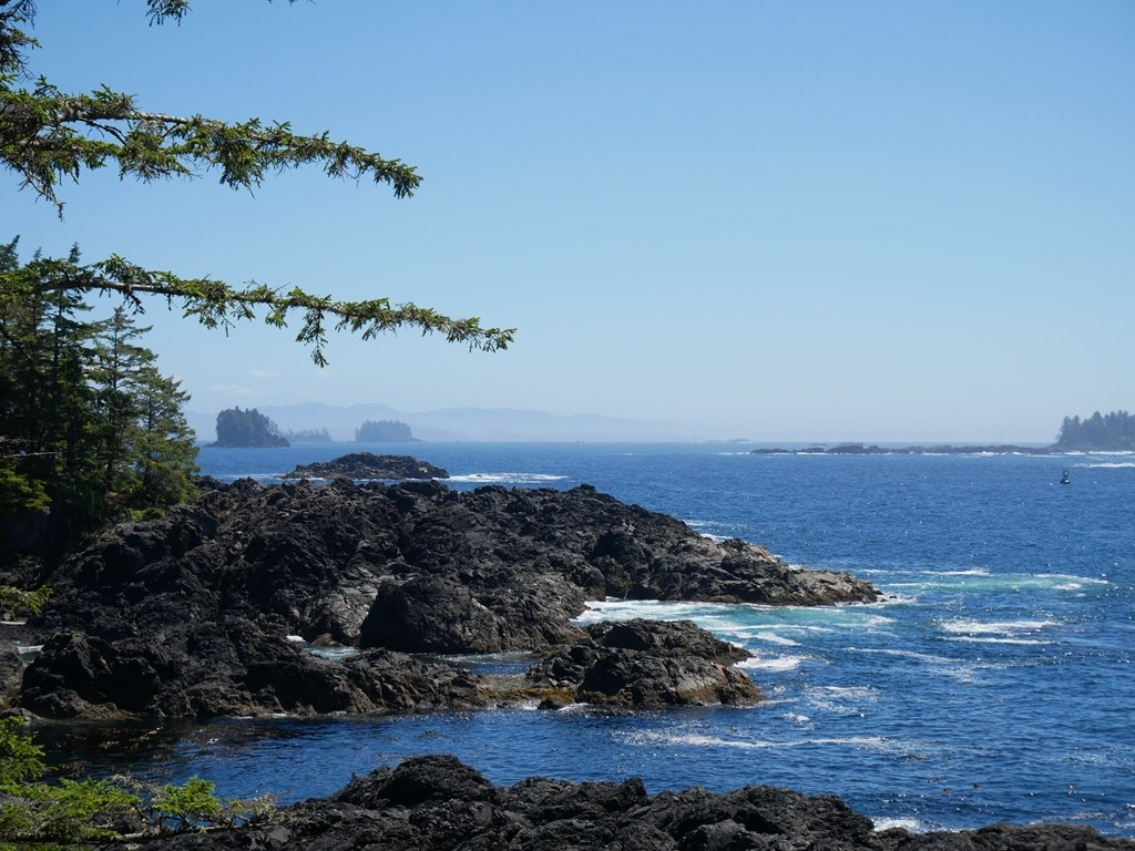 Wild Pacific trail - Ucluelet sur l'île de Vancouver