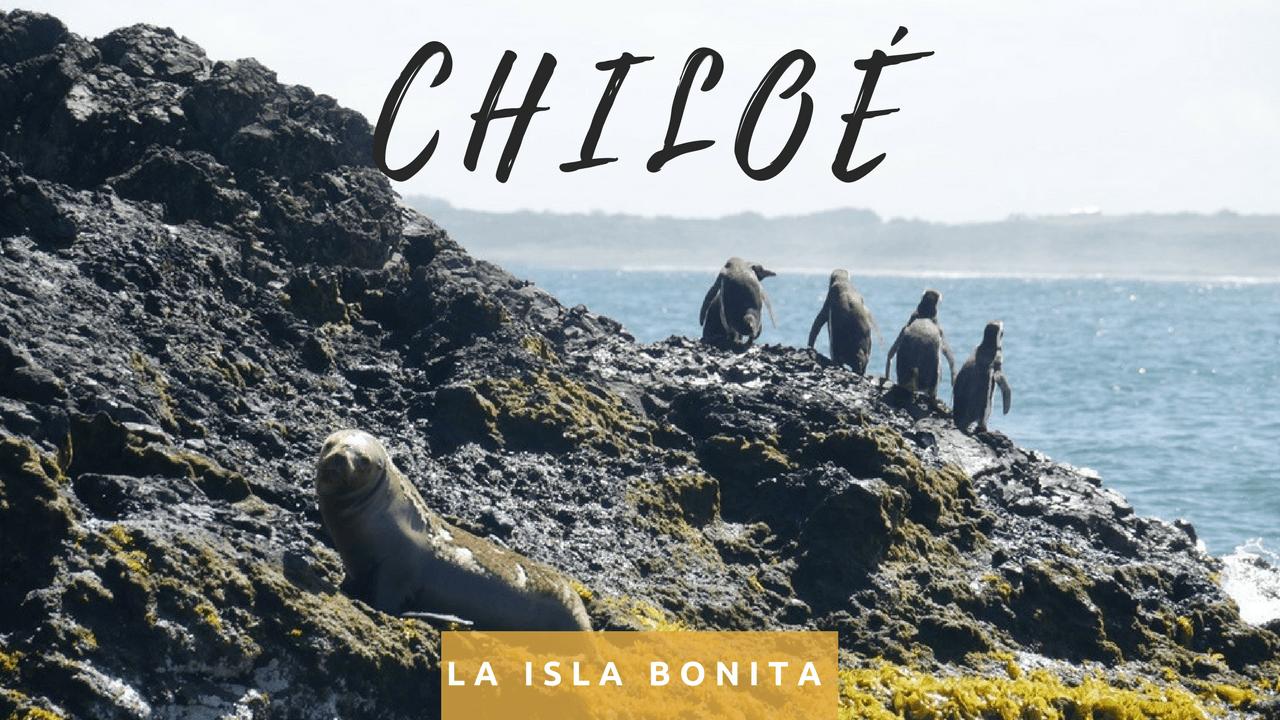 La isla bonita de Chiloé avec ses pingouins et sa culture locale