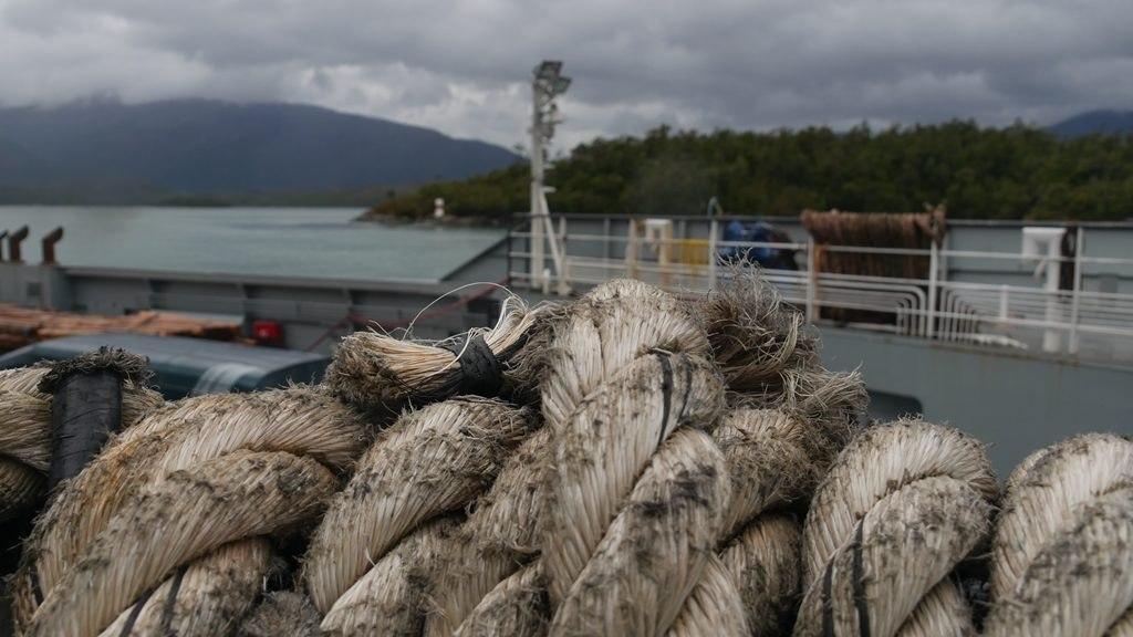 Dans les fjords de la Patagonie