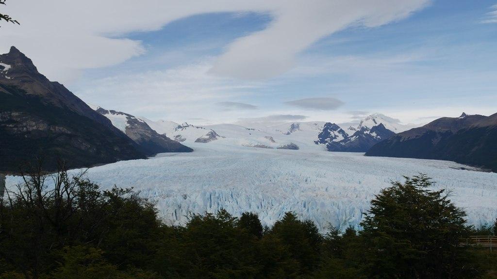 Glacier Perito Moreno derrière les arbres