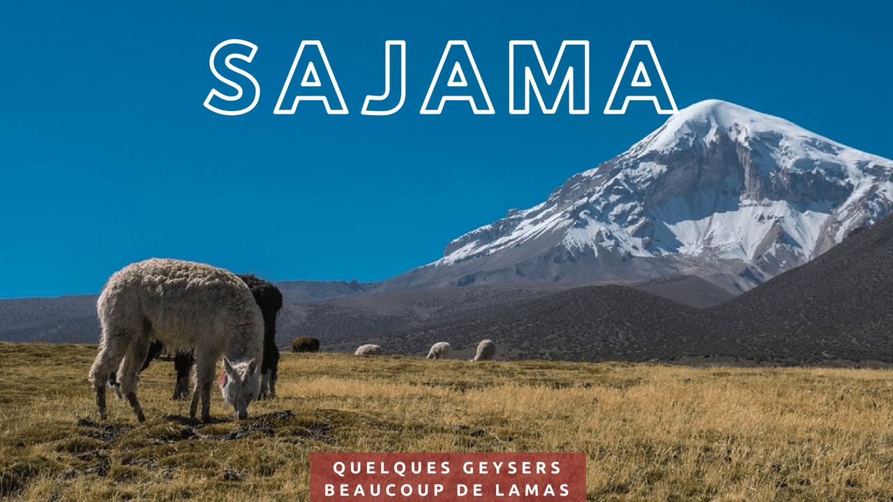 Parc Sajama geysers lamas Deux evades
