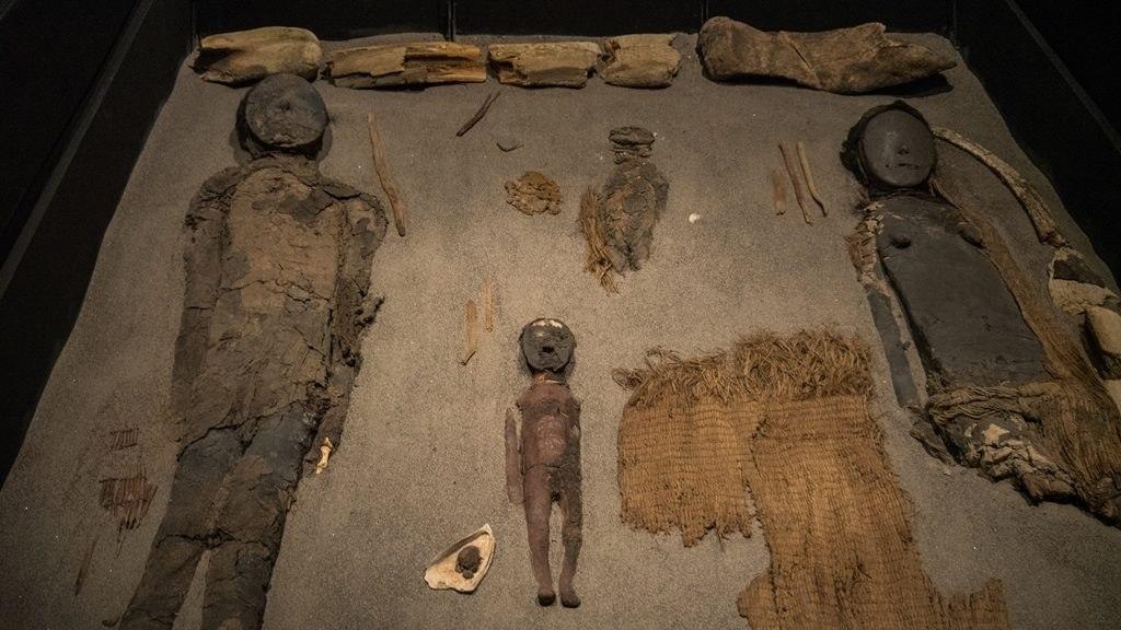 Momies Museo Arqueologico San Jose de Azapa Parc Lauca