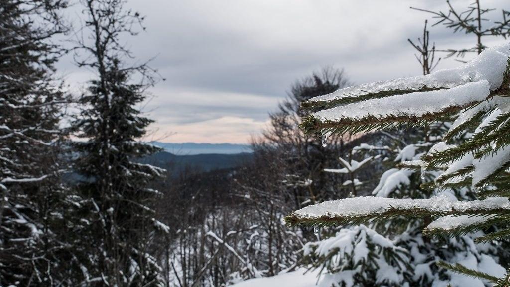 Autour du lac blanc dans les vosges en hiver