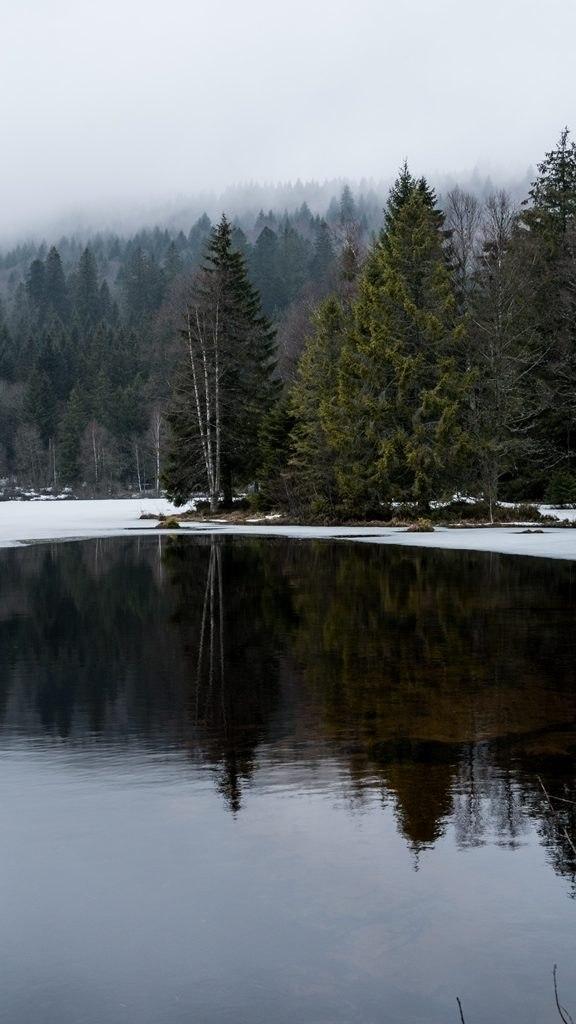Lac Lispach dans les Vosges en hiver